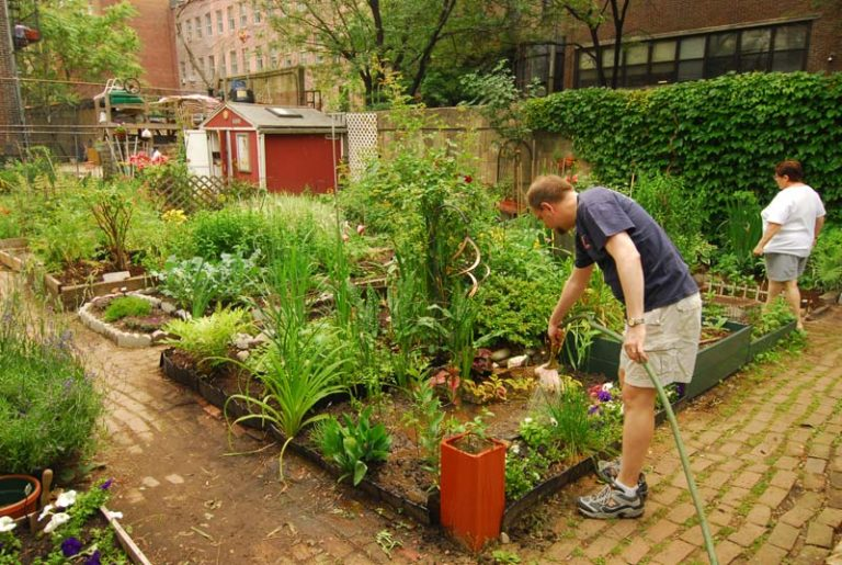 Sharing Garden Work Party Saturday April 18th