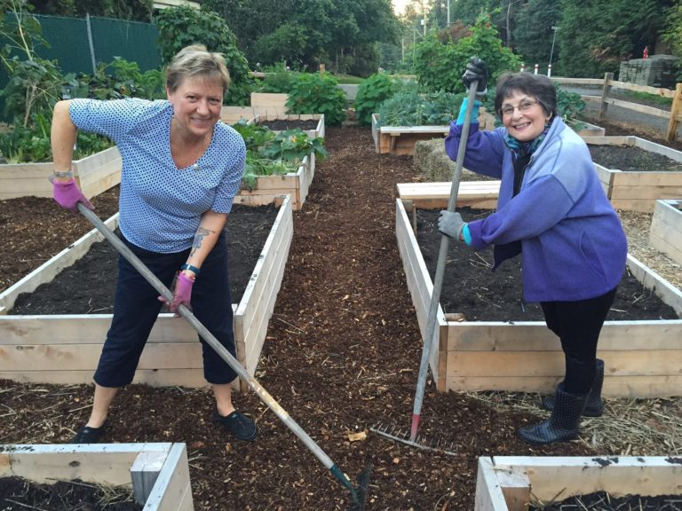 Sharing Garden Harvest Update and Work Party Sunday Oct 4th