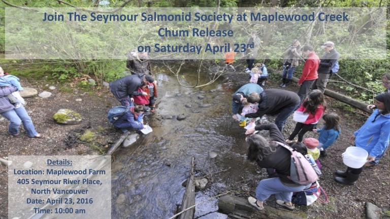 Salmon Chum release at Maplewood Farm Saturday Apr 23 at 10:00 am